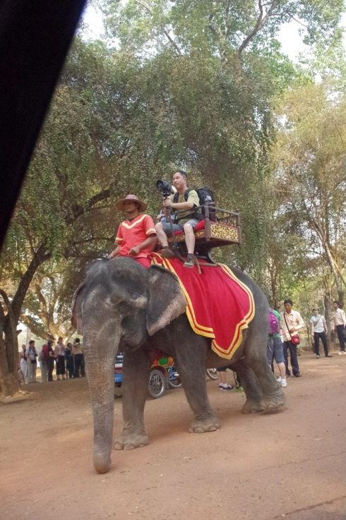 I wonder how much it cost for that ride - an Elephant's Eye view