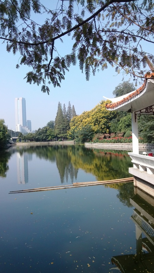 The pavilion perched on the river with a tall building in the background