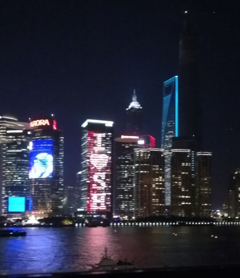 I love Shanghai!  The buildings captured my mood.