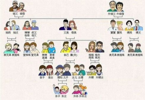 One potential family tree - though Li doesn't agree with all these labels!